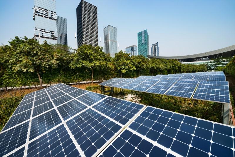 Sustentabilidade Empresarial - Solution Contábil - Sustentabilidade empresarial – O que é e como sua empresa pode aplicá-la?